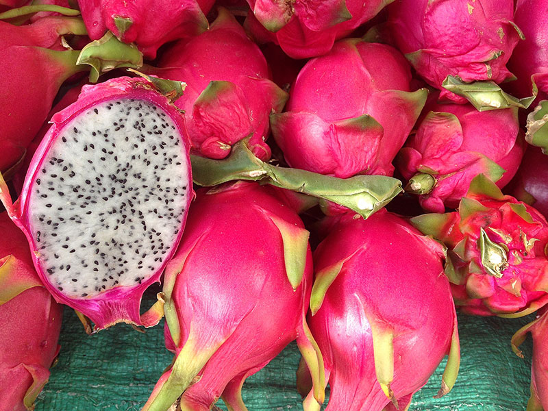 Dragon Fruit | Health benefits of dragon fruit | Pitaya nutrients