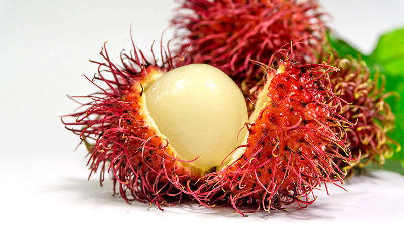 Rambutan Fruit, Health Benefits of Rambutan