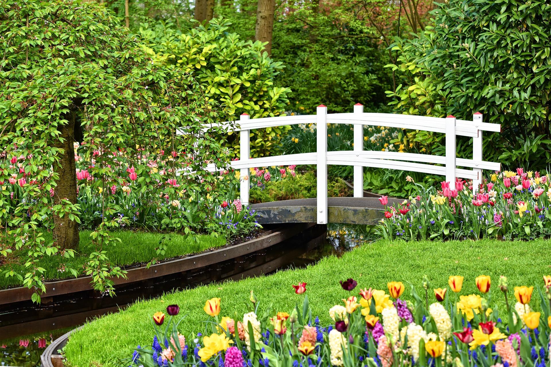 design own landscape|gardening tips|small gardens