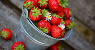 Strawberry Nutrition | Health Benefits of Strawberry