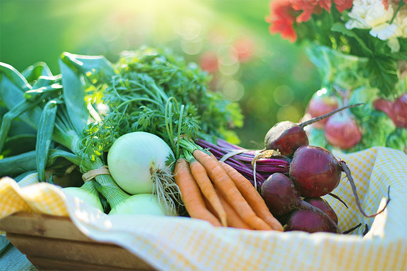 food to keep your skin healthy