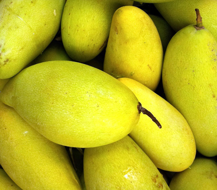 Health benefits of Mango | Mango Nutrients and side effects