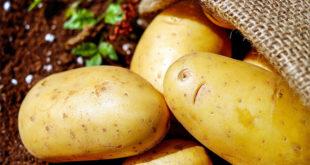 Health Benefit of Potato | Nutritional facts