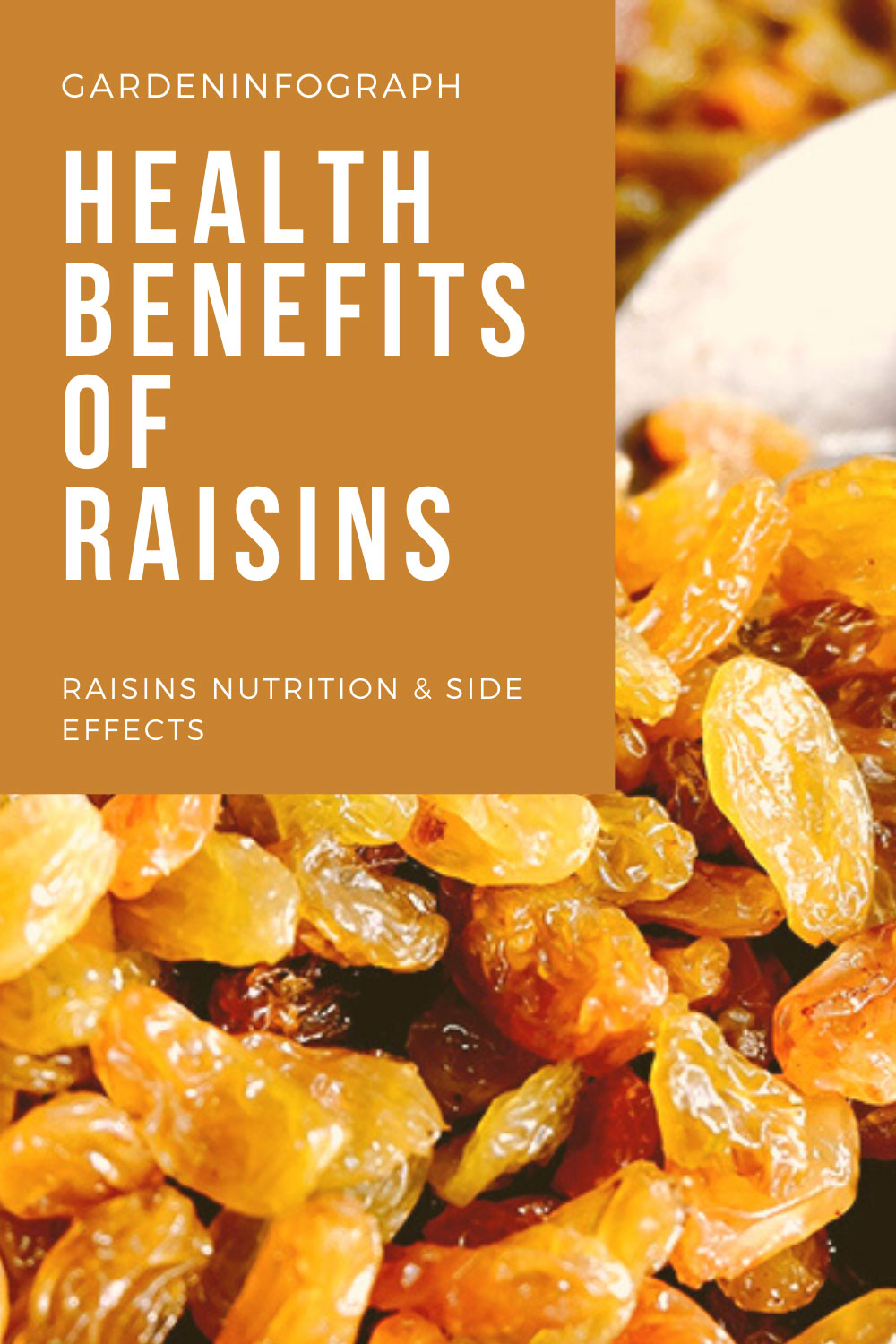 health benefits of saisins