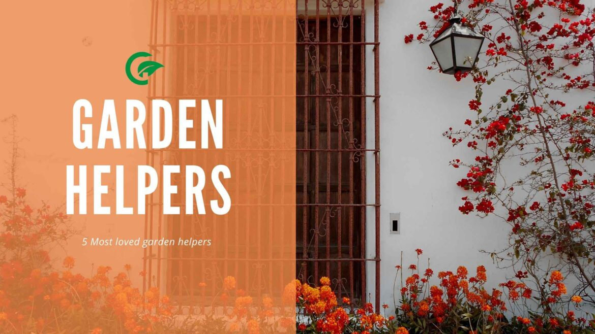 5 Most loved garden helpers