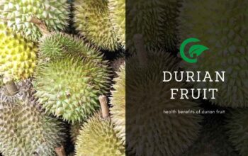 durian fruit benefits
